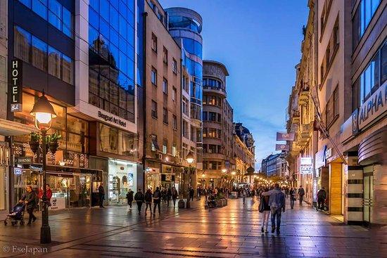 Belgrade art hotel belgrado serbia prezzi 2018 e for Hotel belgrado