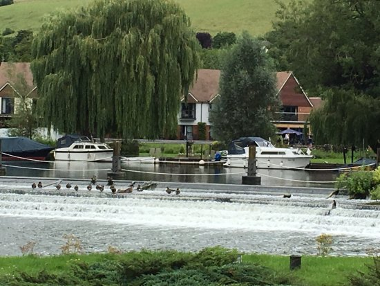 Streatley on Thames, UK: photo1.jpg