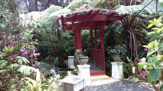 Bilde fra Chalet Kilauea