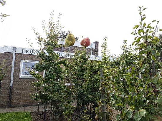 Fruitteeeltmuseum