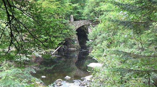 Dunkeld, UK: The bridge near the falls