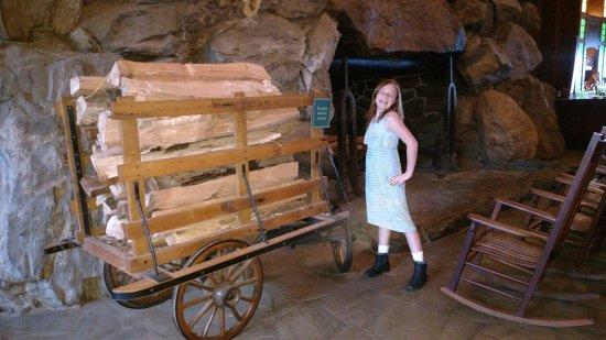 The Omni Grove Park Inn Spa: Fireplace logs