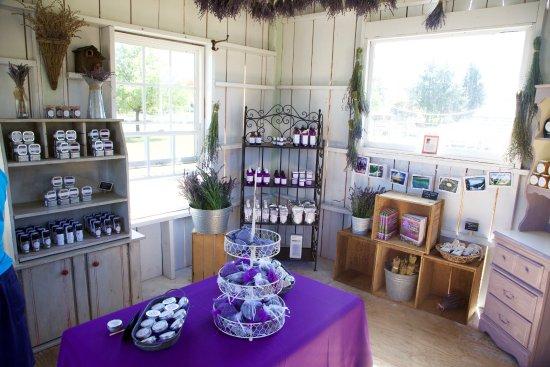 Castle Rock Lavender: Beautiful shop
