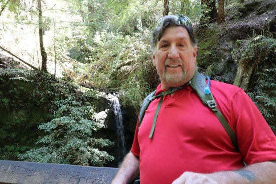 Big Basin Redwoods State Park: Good morning from Sequoia Falls