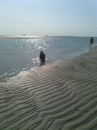 Morehead City, Kuzey Carolina: rippled sand at low tide on sand dollar island