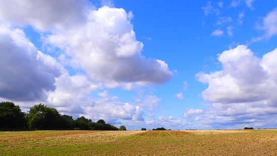 Kent, UK: OI000099_large.jpg