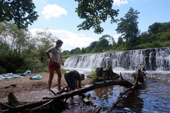 Claverton, UK: Warleigh Weir is a great place to spend a few hours with good weather. Build dams or swim!