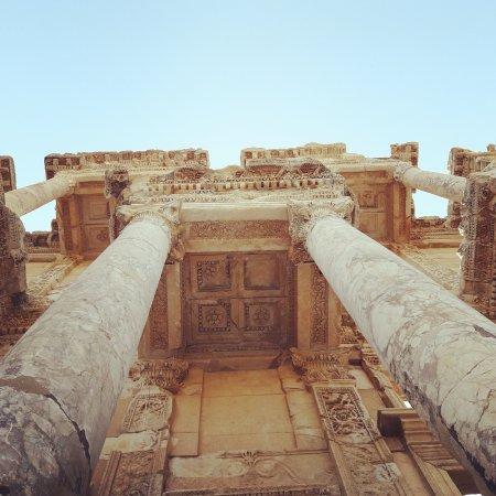 Biblioteca Celsus: IMG_20170813_092107_541_large.jpg