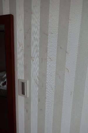 M Chereville Serviced Apartment: Stains all over the wall.