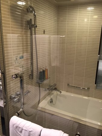 Shower Section in front of (apart from_ tub..Also window into ...