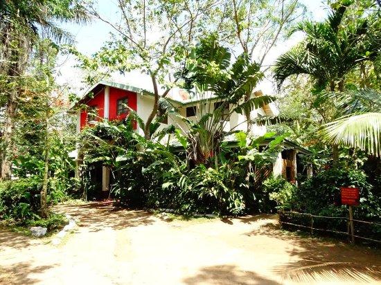 Dolores, Nicaragua: Vista de Hotel y Restaurante DSantos