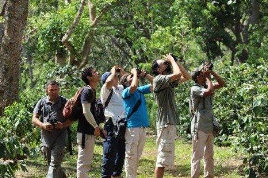 Dolores, Nicaragua: Tour Avistamiento de Aves dentro de la Reserva Concepción de María