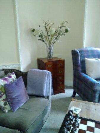 Darwinu0027s Townhouse: Even The Furniture Is Darwin Esque  Luggage Trunk Detail