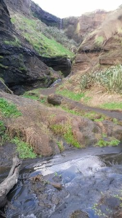 Waiuku, Nova Zelândia: Little streams