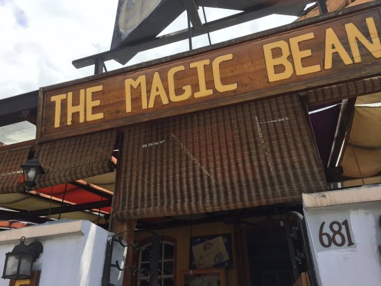 The Magic Bean: photo0.jpg