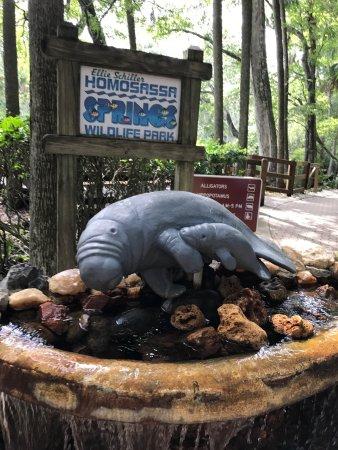 Homosassa Springs, FL: photo3.jpg