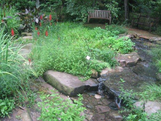 Chapel Hill, Carolina del Nord: Coker