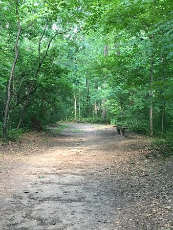 Hobart, IN: Nice shaded trails