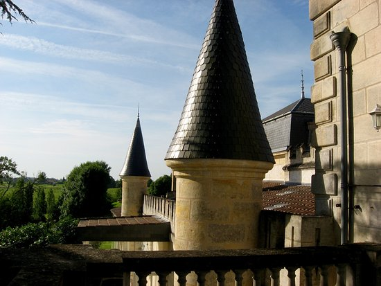 Capian, Francia: Vue des vignoble à partir de la terrasse de la chambre