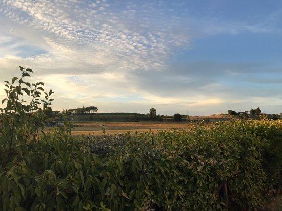 Sapori di Toscana: Vista