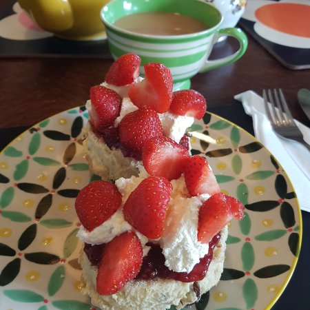 Kinlochewe, UK: Lovely scone with jam, cream and strawberries and generous pot of tea. A gem of a place - so goo