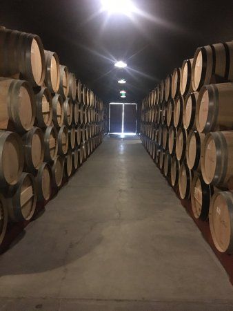 B Cellars Winery Oakville, CA: Top Tips Before You Go with Photos  TripAdvisor