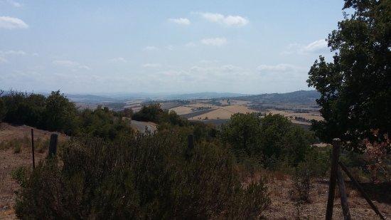 Semproniano, Włochy: IMG-20170809-WA0004_large.jpg