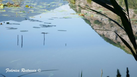 Provaglio d'Iseo, อิตาลี: DSCF2341_large.jpg