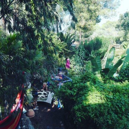 Teteria jardin de los sentidos altea restaurant reviews for Jardin de los sentidos