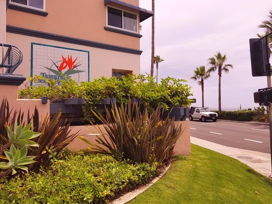 Tamarack Beach Resort and Hotel: Corner of Carlsbad Blvd and Pine St.