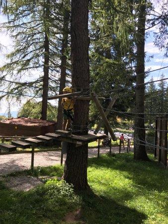 Parco Avventura Resinelli: photo1.jpg