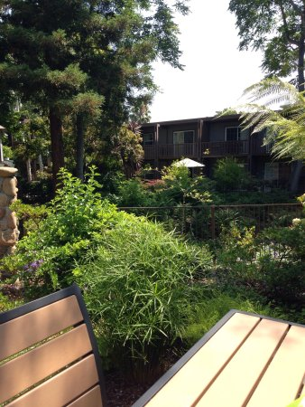 Creekside Inn   A Greystone Hotel: Peaceful, Beautiful, Well Landscaped  Gardens And A