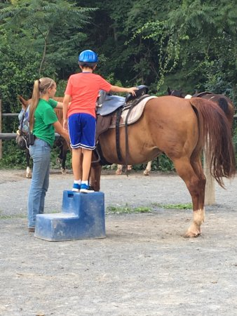 Mountain Creek Riding Stables: photo0.jpg
