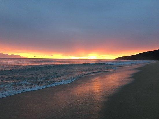 Playa Grande, كوستاريكا: Sunset at Playa Grande
