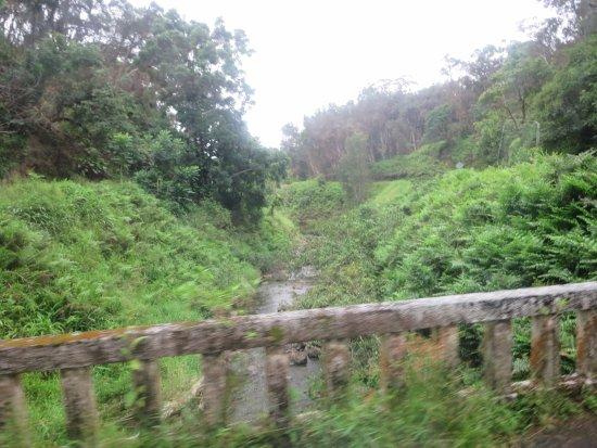 Wailuku, ฮาวาย: lots of bridges