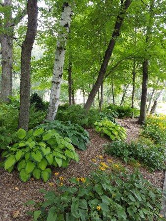 Lindstrom, MN: Garden