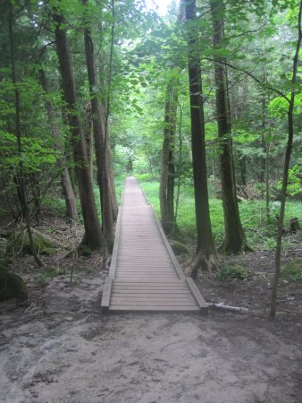 Rattlesnake Point Conservation Area: Part of trail
