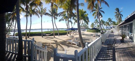 Coconut Palm Inn Imagem