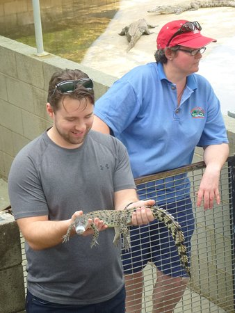 Palm Cove, Australia: This was the Crocodile we all had the chance to hold.