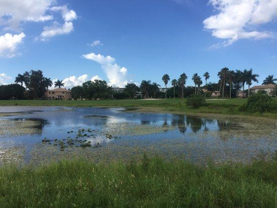 Weston, Φλόριντα: photo3.jpg