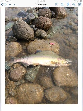 Squamish, Canada: Natures work of art