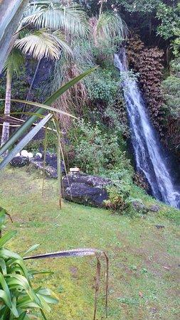 Whangarei, New Zealand: Small waterfall