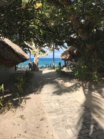 Castaway Island Fiji: photo1.jpg