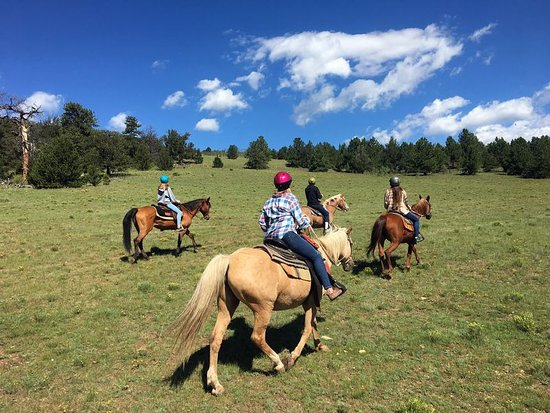 Fairplay, CO: Open riding with spectacular scenery. Not boring line of horses.