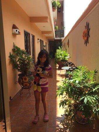 Hotel Rosalía : corredor