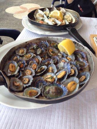 Boaventura, Portugal: photo1.jpg