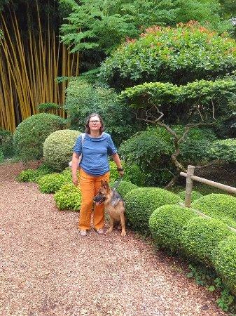 Le Buisson-de-Cadouin, France: Les chiens , en laisse, sont les bienvenus !