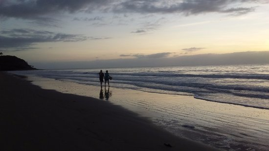 At the Mango Tree Holiday Apartments: Beautiful Four Mile Beach a short walk away