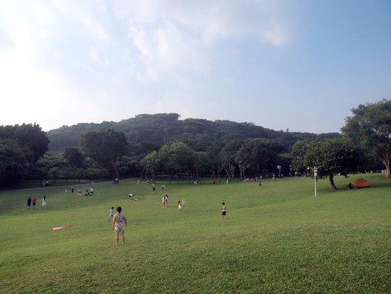 Shenzhen Lianhuashan Park: 廣闊草地