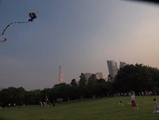 Shenzhen Lianhuashan Park: 很多朋友在放風箏